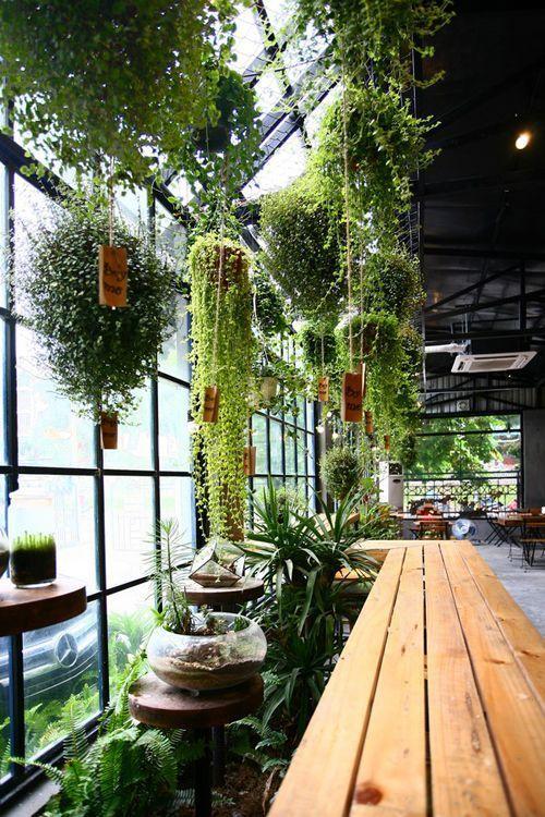 Оранжерея в мансардном этаже - мансарда своими руками в частном доме дизайн фото