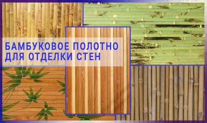 Виды бамбуковых обои