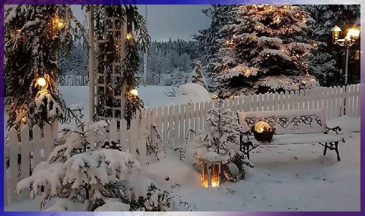 Идеи для сада и дачи зима