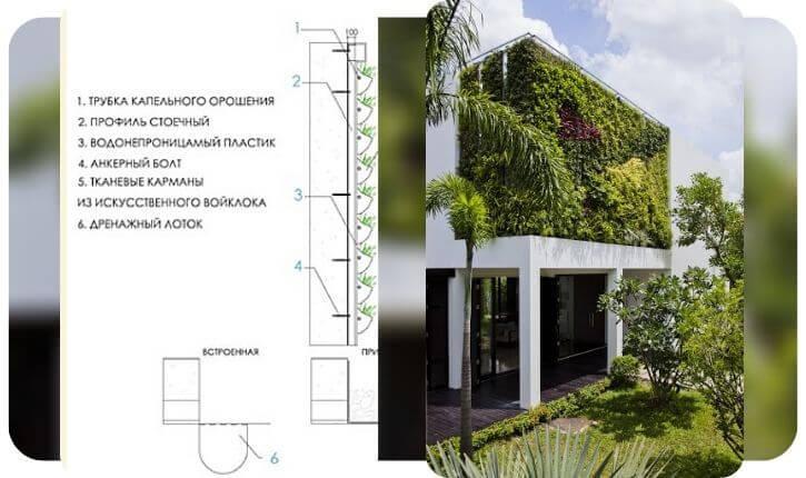 Особняк с навесными вертикальными садами или панно с натуральным ландшафтным дизайном